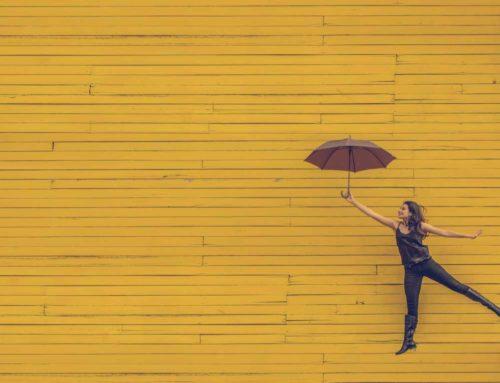 Die 3 Prinzipien – und wie sie dein Leben für immer verändern…