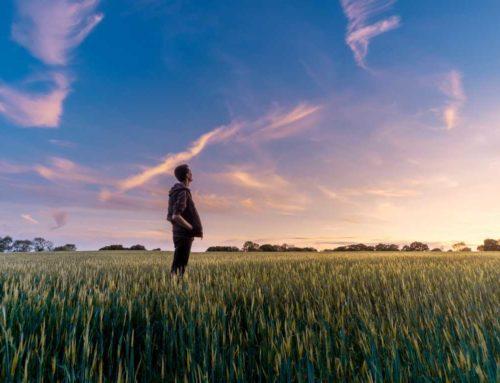 Wie du durch die Macht der Gedanken dein Leben erschaffst
